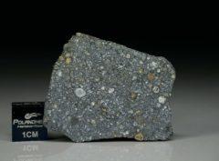 NWA 11387 (5.76 gram)
