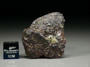 NWA 4837 (8.13 gram)