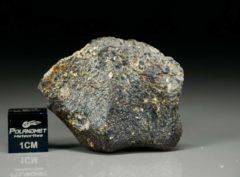 NWA 4836 (6.70 gram)