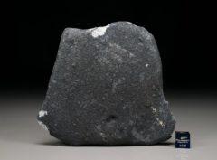Ghdamis LIBYA FALL (128.3 gram)