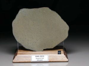 NWA 5515 (222 gram)