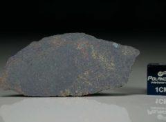 NWA 4969 (2.58 gram)