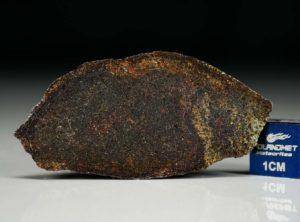 NWA 4969 (3.25 gram)