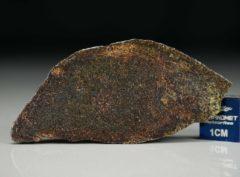 NWA 4969 (4.73 gram)