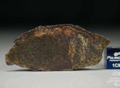 NWA 4969 (2.93 gram)