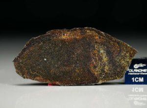 NWA 4969 (3.02 gram)