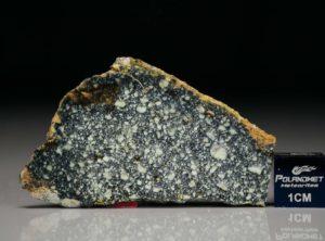 NWA 4965 (5.25 gram)