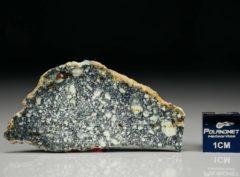 NWA 4965 (4.04 gram)