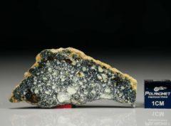 NWA 4965 (3.86 gram)