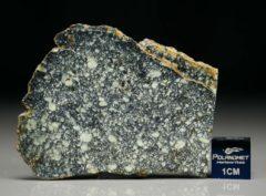 NWA 4965 (8.45 gram)