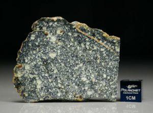 NWA 4965 (8.46 gram)