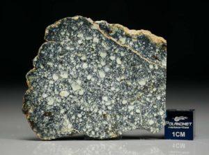 NWA 4965 (9.05 gram)