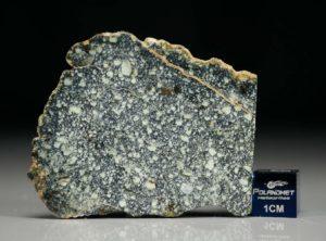NWA 4965 (8.36 gram)