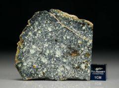 NWA 4965 (9.57 gram)