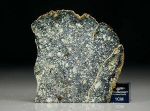 NWA 4965 (9.58 gram)