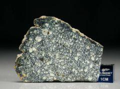 NWA 4965 (7.19 gram)