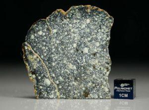 NWA 4965 (10.53 gram)