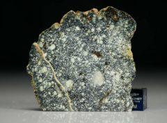 NWA 4965 (10.66 gram)