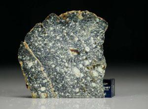 NWA 4965 (10.11 gram)