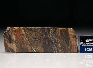 NWA 6308 (3.90 gram)