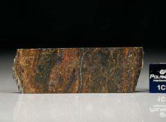 NWA 6308 (4.21 gram)