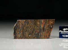 NWA 6308 (3.50 gram)