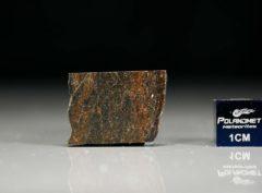 NWA 6308 (2.11 gram)