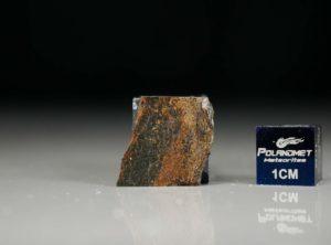 NWA 6308 (1.55 gram)