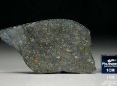 NWA 8221 (5.97 gram)