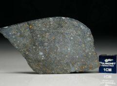 NWA 8221 (6.41 gram)
