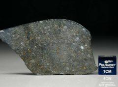 NWA 8221 (5.76 gram)