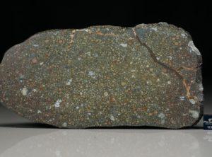 NWA 12675 (111.2 gram)