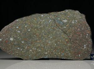 NWA 12675 (123.6 gram)