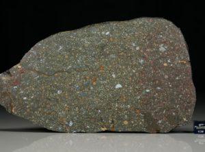 NWA 12675 (181.5 gram)