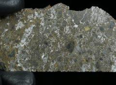 ŁOWICZ (23.50 gram)