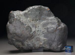 TCHIFADDINE (318.2 gram)