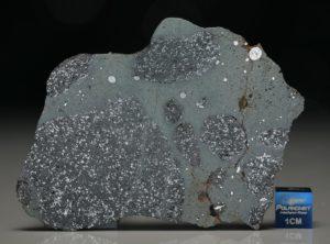 TCHIFADDINE (30.98 gram)