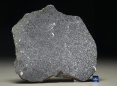 TASSÉDET 004 (236 gram)