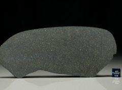 NWA 12816 (53.15 gram)