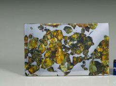 SEYMCHAN (29.3 gram)
