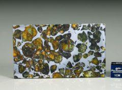 SEYMCHAN (34.6 gram)