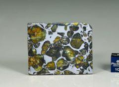 SEYMCHAN (13.4 gram)