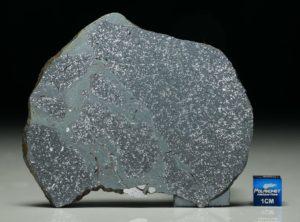 TASSÉDET 004 (41.5 gram)