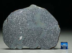TASSÉDET 004 (40.4 gram)