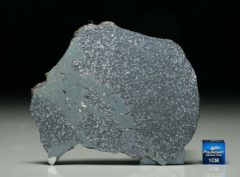 TASSÉDET 004 (34.8 gram)