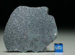 TASSÉDET 004 (31.2 gram)