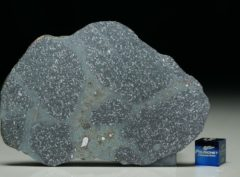 TASSÉDET 004 (34.6 gram)