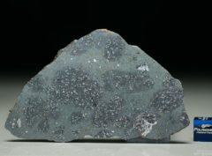 TASSÉDET 004 (28.3 gram)
