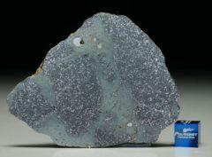 TASSÉDET 004 (27.5 gram)