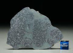 TASSÉDET 004 (25.8 gram)